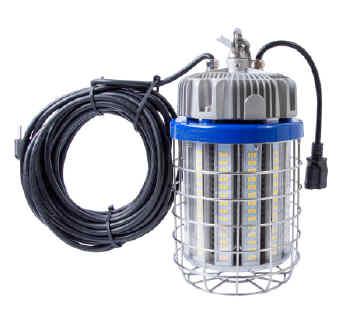 Temp Light 150w LED
